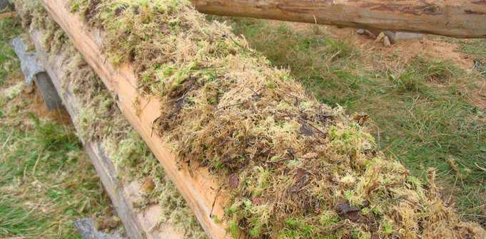 Межвенцовый утеплитель сруба из моха