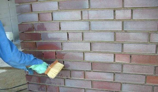 Нанесите грунт на стену перед покраской
