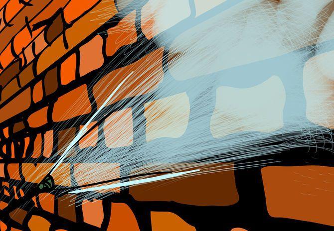 Отмойте стены водой из шланга