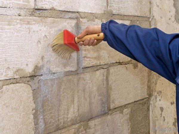 Обработайте стены антигрибковым средством