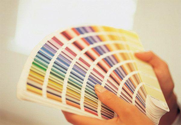 Цветовая палитра латексной краски
