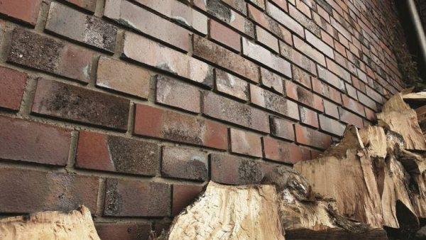 Облицовка из клинкера. Возраст этого дома - свыше 30 лет. Блоки лишь покрылись плесенью, кое-где есть следы высола. Все это устраняется с помощью кислотного раствора