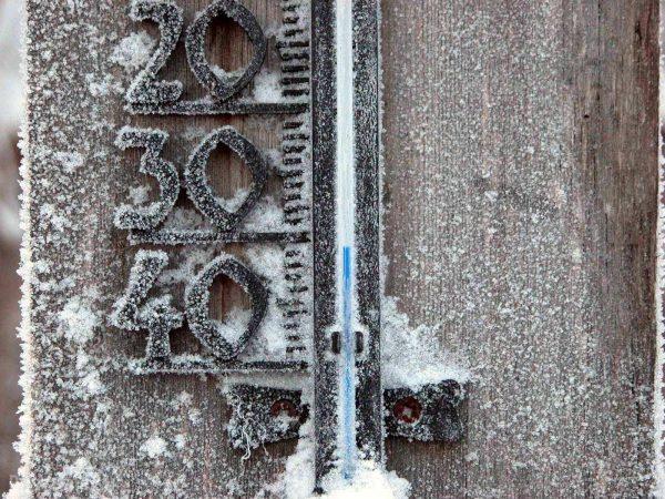 Рычажный захват нельзя использовать при отрицательных температурах